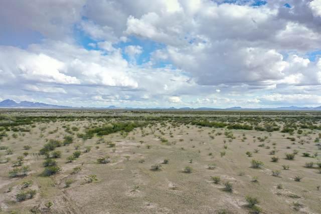 0 S 547th Avenue, Tonopah, AZ 85354 (MLS #6183465) :: Keller Williams Realty Phoenix