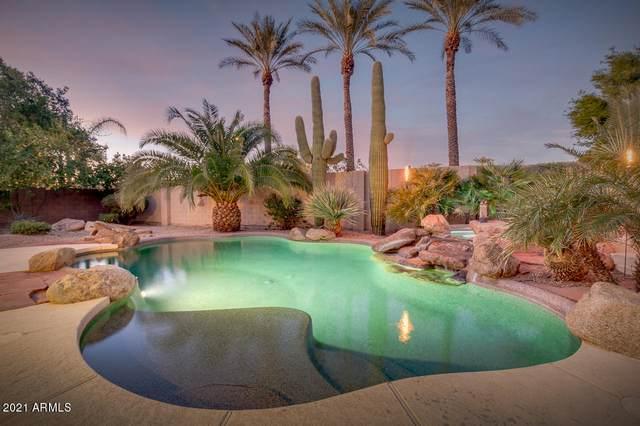 14418 W Cora Lane, Goodyear, AZ 85395 (MLS #6183544) :: Yost Realty Group at RE/MAX Casa Grande