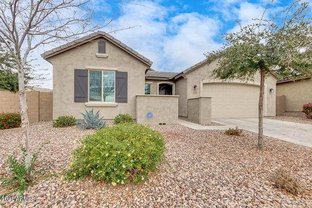19646 W Grant Street, Buckeye, AZ 85326 (#6183550) :: AZ Power Team | RE/MAX Results