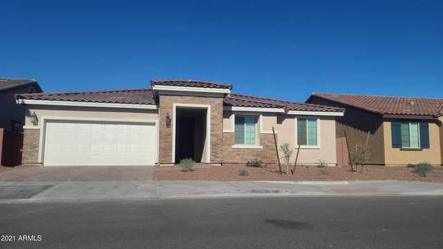8410 W Palmaire Avenue, Glendale, AZ 85305 (MLS #6183562) :: The AZ Performance PLUS+ Team