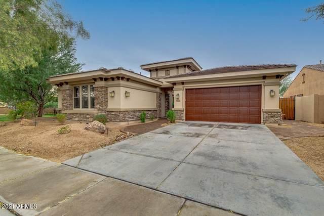 1723 W Dusty Wren Drive, Phoenix, AZ 85085 (MLS #6183577) :: Long Realty West Valley
