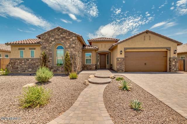 2853 E La Costa Drive, Gilbert, AZ 85298 (MLS #6183614) :: Sheli Stoddart Team | M.A.Z. Realty Professionals