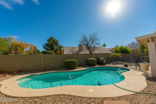 1137 N Hawk Lane, Gilbert, AZ 85234 (MLS #6183664) :: The Helping Hands Team