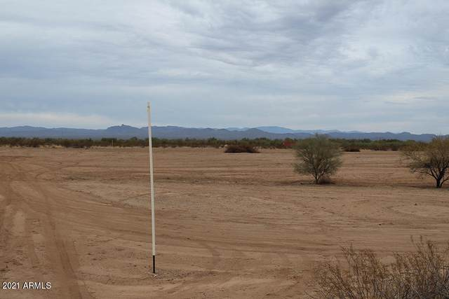 24130 W Dixileta Drive, Wittmann, AZ 85361 (MLS #6183670) :: The Helping Hands Team