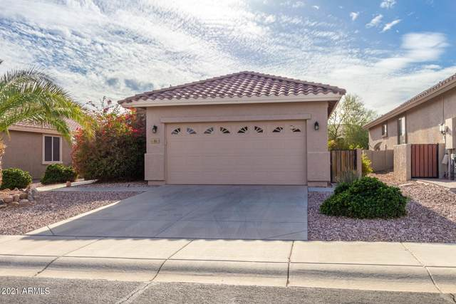 464 S 227TH Court, Buckeye, AZ 85326 (MLS #6183678) :: The Helping Hands Team