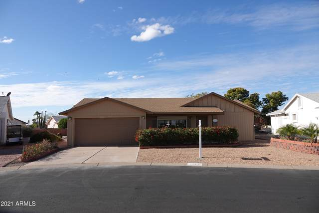 1142 S 81ST Place, Mesa, AZ 85208 (MLS #6183808) :: Nate Martinez Team
