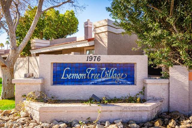 1976 N Lemon Tree Lane #1, Chandler, AZ 85224 (MLS #6183835) :: West Desert Group | HomeSmart
