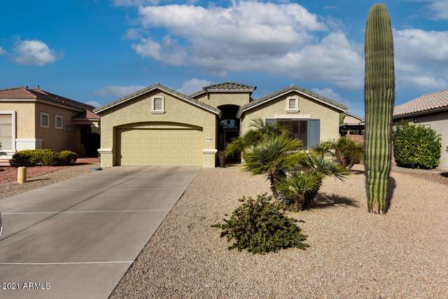18108 W Hayden Drive, Surprise, AZ 85374 (MLS #6183845) :: Sheli Stoddart Team   M.A.Z. Realty Professionals