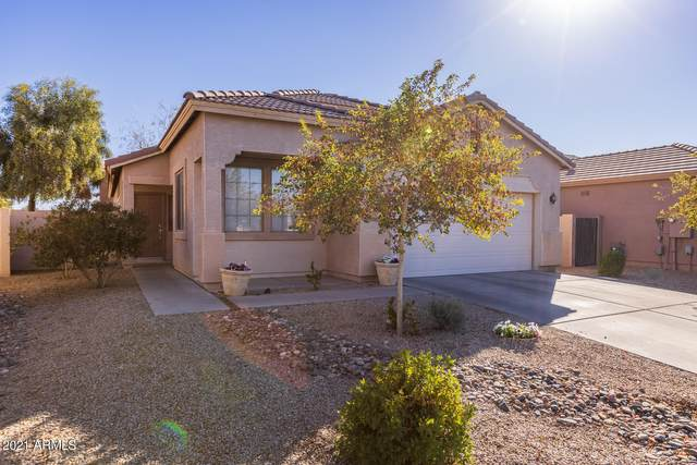 21141 N Ancon Avenue, Maricopa, AZ 85139 (MLS #6183890) :: Power Realty Group Model Home Center