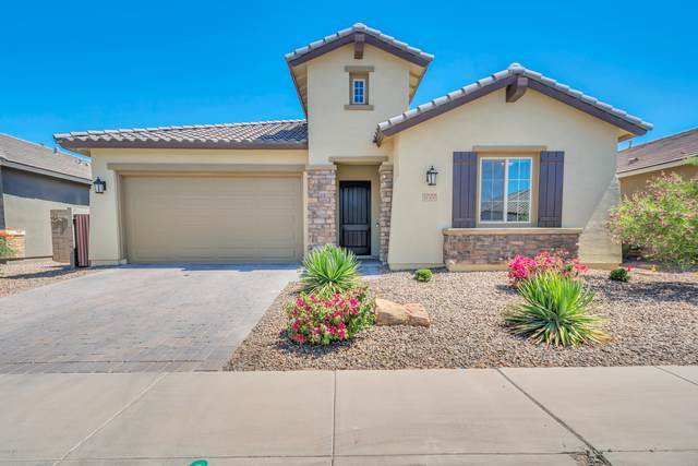 41300 W Almira Drive, Maricopa, AZ 85138 (MLS #6183905) :: Power Realty Group Model Home Center