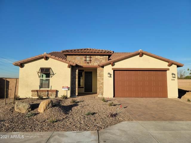 5016 N 81st Avenue, Glendale, AZ 85303 (MLS #6183913) :: neXGen Real Estate