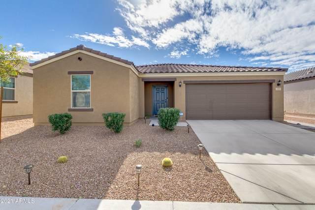 1805 E Chanute Pass, Phoenix, AZ 85040 (MLS #6183921) :: neXGen Real Estate