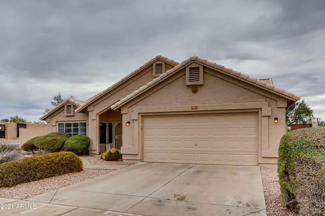 30663 N 44TH Street, Cave Creek, AZ 85331 (MLS #6183922) :: The Dobbins Team