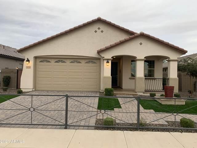 15303 W Latham Street, Goodyear, AZ 85338 (MLS #6183945) :: Kepple Real Estate Group