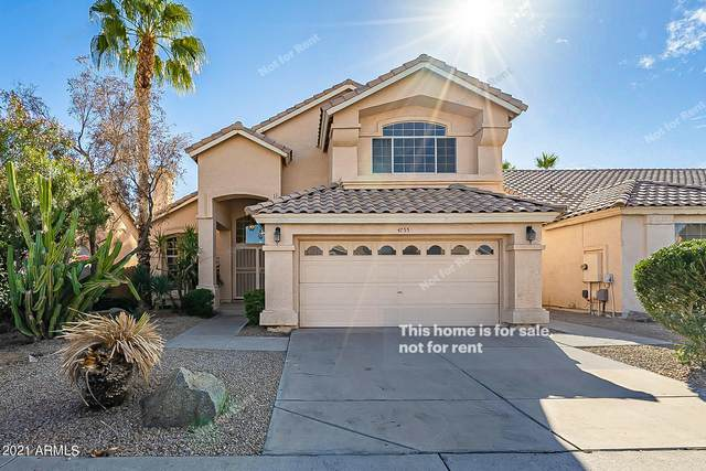 4755 E White Aster Street, Phoenix, AZ 85044 (MLS #6183960) :: Power Realty Group Model Home Center