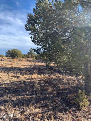 440 N Antelope Valley Ranch, Seligman, AZ 86337 (MLS #6183985) :: Yost Realty Group at RE/MAX Casa Grande