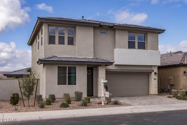 9914 E Acceleration Drive, Mesa, AZ 85212 (MLS #6183995) :: The W Group