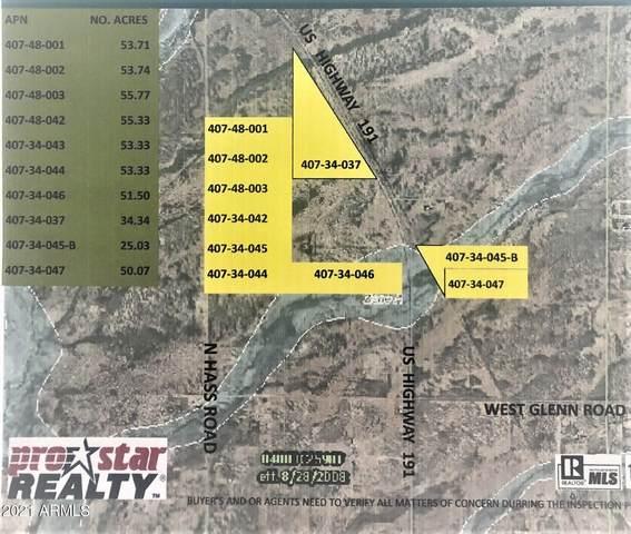 00XX Hwy 191, Douglas, AZ 85607 (MLS #6184010) :: Yost Realty Group at RE/MAX Casa Grande