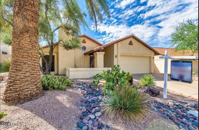 414 E Barbara Drive, Tempe, AZ 85281 (MLS #6184038) :: Power Realty Group Model Home Center