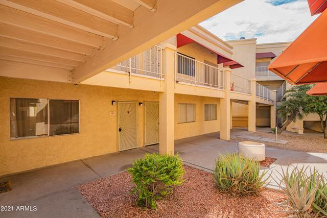12221 W Bell Road #147, Surprise, AZ 85378 (MLS #6184040) :: Sheli Stoddart Team | M.A.Z. Realty Professionals