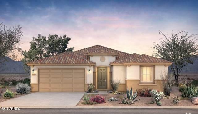 8840 W Marshall Avenue, Glendale, AZ 85305 (MLS #6184096) :: neXGen Real Estate