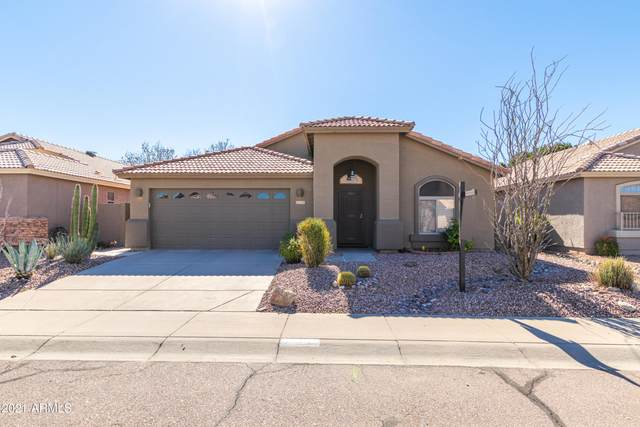 2719 E Beverly Road, Phoenix, AZ 85042 (MLS #6184103) :: Yost Realty Group at RE/MAX Casa Grande