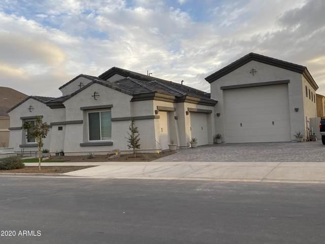 21746 E Russet Road, Queen Creek, AZ 85142 (MLS #6184110) :: Power Realty Group Model Home Center