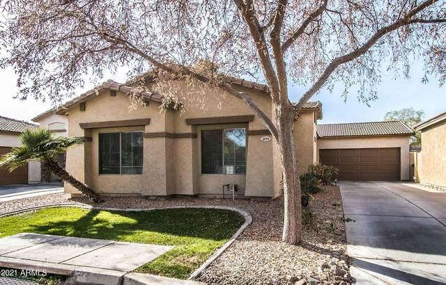 2084 N Holguin Way, Chandler, AZ 85225 (MLS #6184133) :: Power Realty Group Model Home Center