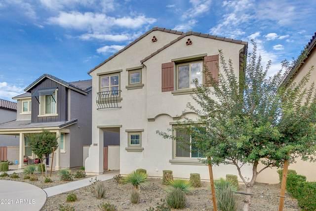 5018 S Turbine, Mesa, AZ 85212 (MLS #6184189) :: Power Realty Group Model Home Center