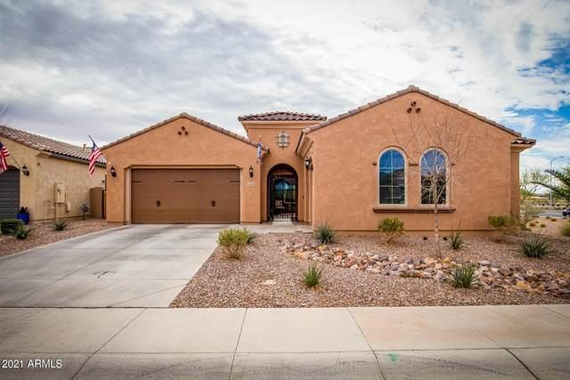 10839 E Tarragon Avenue, Mesa, AZ 85212 (MLS #6184195) :: Power Realty Group Model Home Center