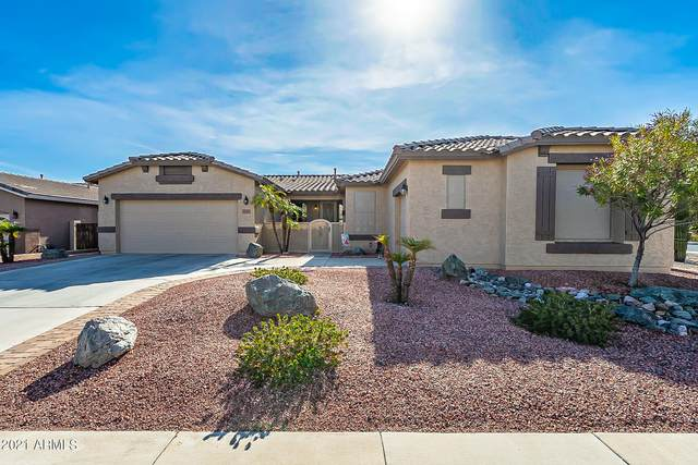 6535 W Silver Sage Lane, Phoenix, AZ 85083 (MLS #6184213) :: Power Realty Group Model Home Center