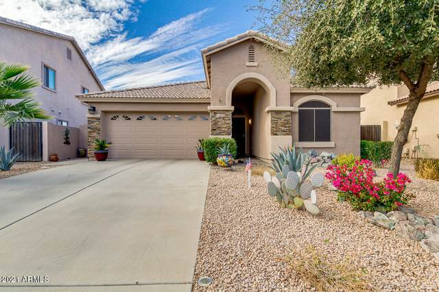 29374 N Yellow Bee Drive, San Tan Valley, AZ 85143 (MLS #6184233) :: Sheli Stoddart Team | M.A.Z. Realty Professionals
