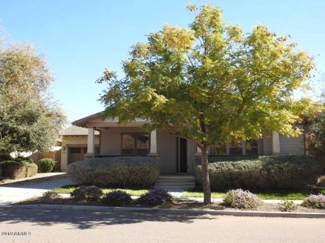 13669 N 151ST Drive, Surprise, AZ 85379 (MLS #6184250) :: Sheli Stoddart Team | M.A.Z. Realty Professionals