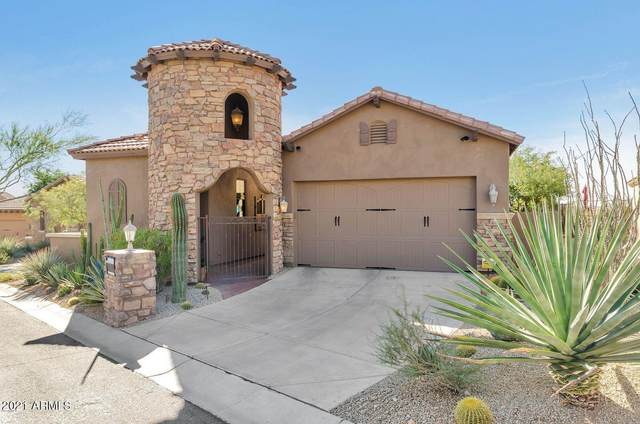 11692 N 134TH Street, Scottsdale, AZ 85259 (MLS #6184259) :: CANAM Realty Group