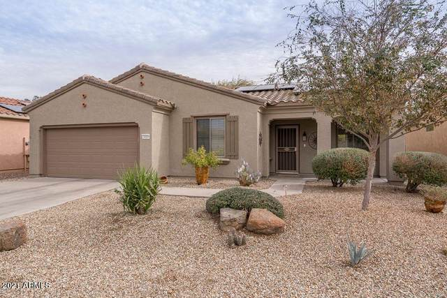21019 N Sequoia Crest Drive, Surprise, AZ 85387 (MLS #6184314) :: Homehelper Consultants