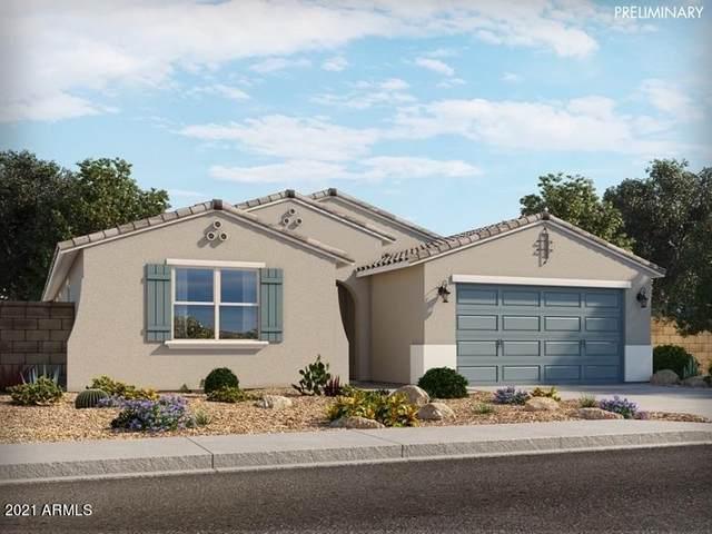 19932 N Lauren Road, Maricopa, AZ 85138 (MLS #6184316) :: Homehelper Consultants