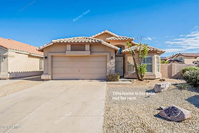 10335 N 58TH Lane, Glendale, AZ 85302 (MLS #6184321) :: Homehelper Consultants