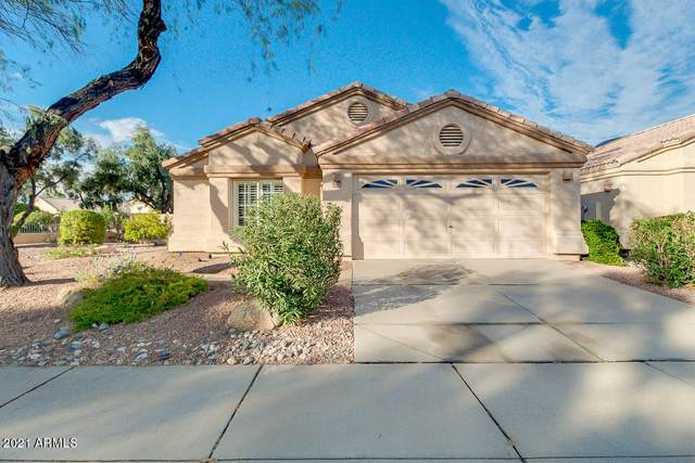 14032 W Fire Mesa Trail, Surprise, AZ 85374 (MLS #6184390) :: Long Realty West Valley