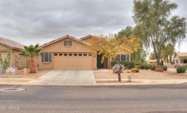 53 N Bolera Lane, Casa Grande, AZ 85194 (MLS #6184400) :: Yost Realty Group at RE/MAX Casa Grande