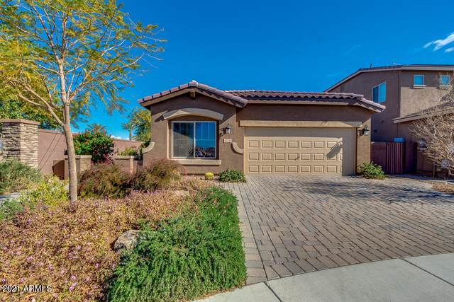 42249 N Wollemi Street, San Tan Valley, AZ 85140 (MLS #6184481) :: Yost Realty Group at RE/MAX Casa Grande