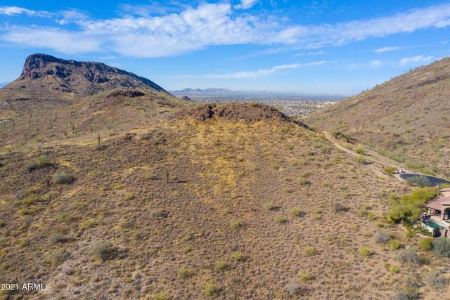 10729 N Ventura Court, Fountain Hills, AZ 85268 (MLS #6184529) :: neXGen Real Estate