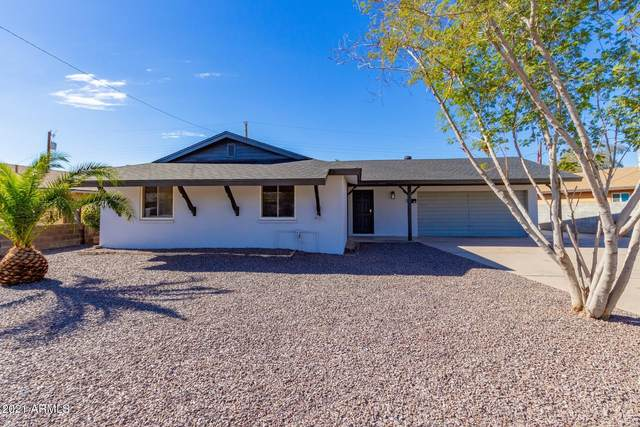 510 S Daley Drive, Mesa, AZ 85204 (MLS #6184556) :: The Everest Team at eXp Realty