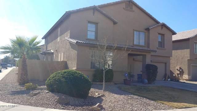 45993 W Dutchman Drive, Maricopa, AZ 85139 (MLS #6184592) :: Nate Martinez Team