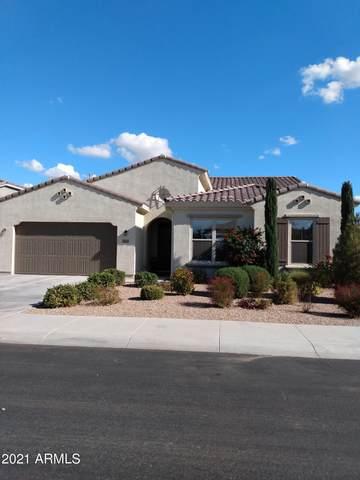 6869 S Claiborne Avenue, Gilbert, AZ 85298 (MLS #6184602) :: Kepple Real Estate Group