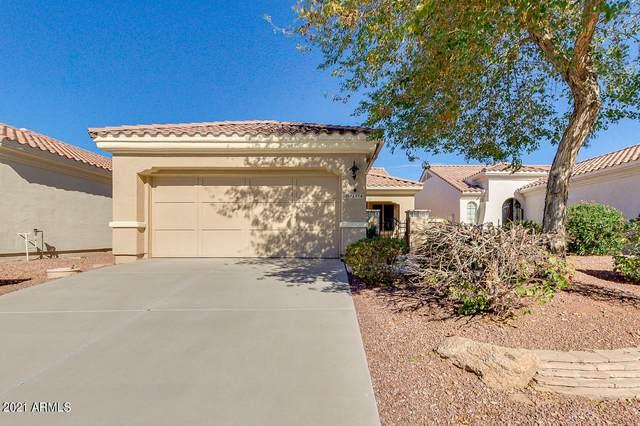 12914 W Chapala Drive, Sun City West, AZ 85375 (MLS #6184609) :: neXGen Real Estate