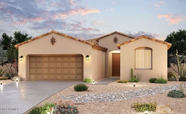 40805 W Haley Drive, Maricopa, AZ 85138 (MLS #6184613) :: CANAM Realty Group