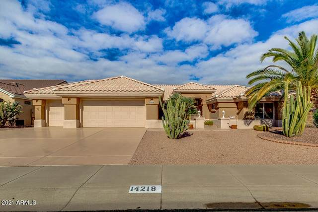 14218 W Dusty Trail Boulevard, Sun City West, AZ 85375 (MLS #6184661) :: Yost Realty Group at RE/MAX Casa Grande