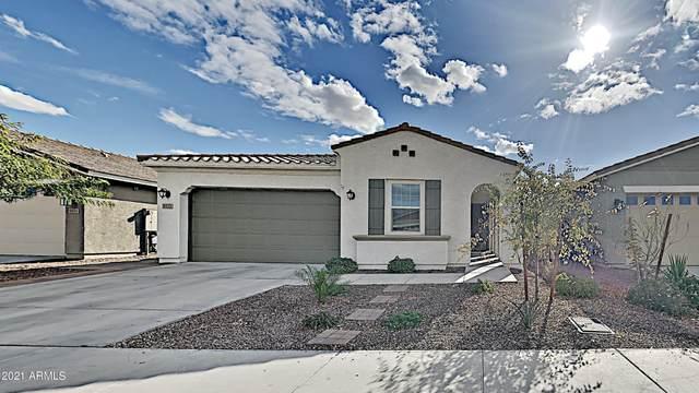 9415 W Willow Bend Lane, Phoenix, AZ 85037 (MLS #6184697) :: neXGen Real Estate