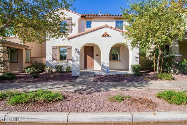 2378 N Valley View Drive, Buckeye, AZ 85396 (MLS #6184722) :: Executive Realty Advisors