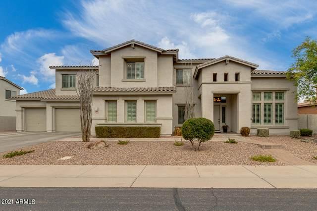 1874 E Scorpio Place, Chandler, AZ 85249 (MLS #6184797) :: Keller Williams Realty Phoenix